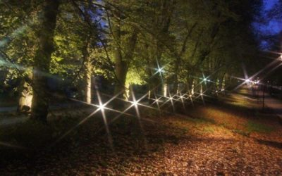 Park nocą2